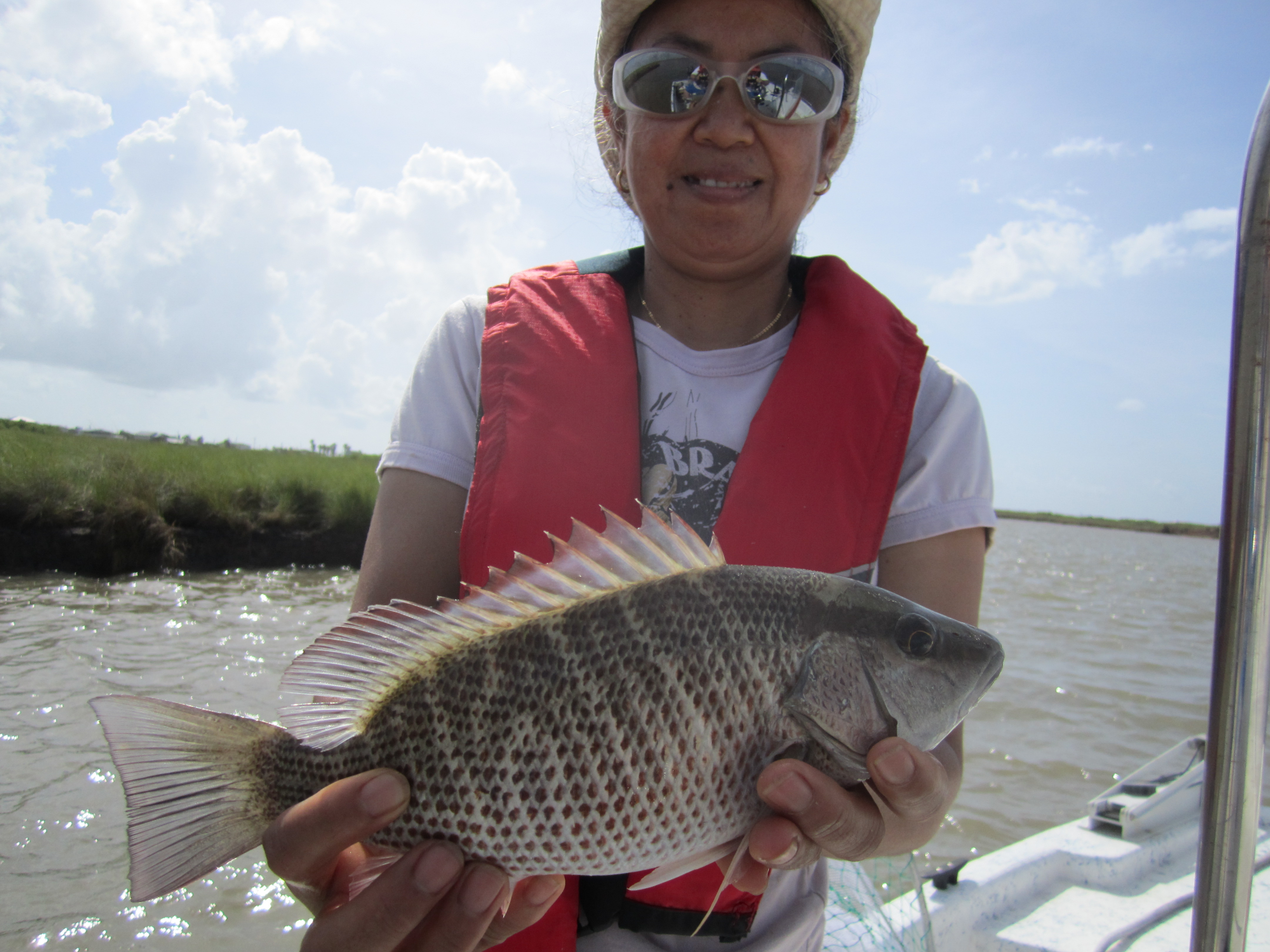 Mangrove snapper fishsargent for East matagorda bay fishing report