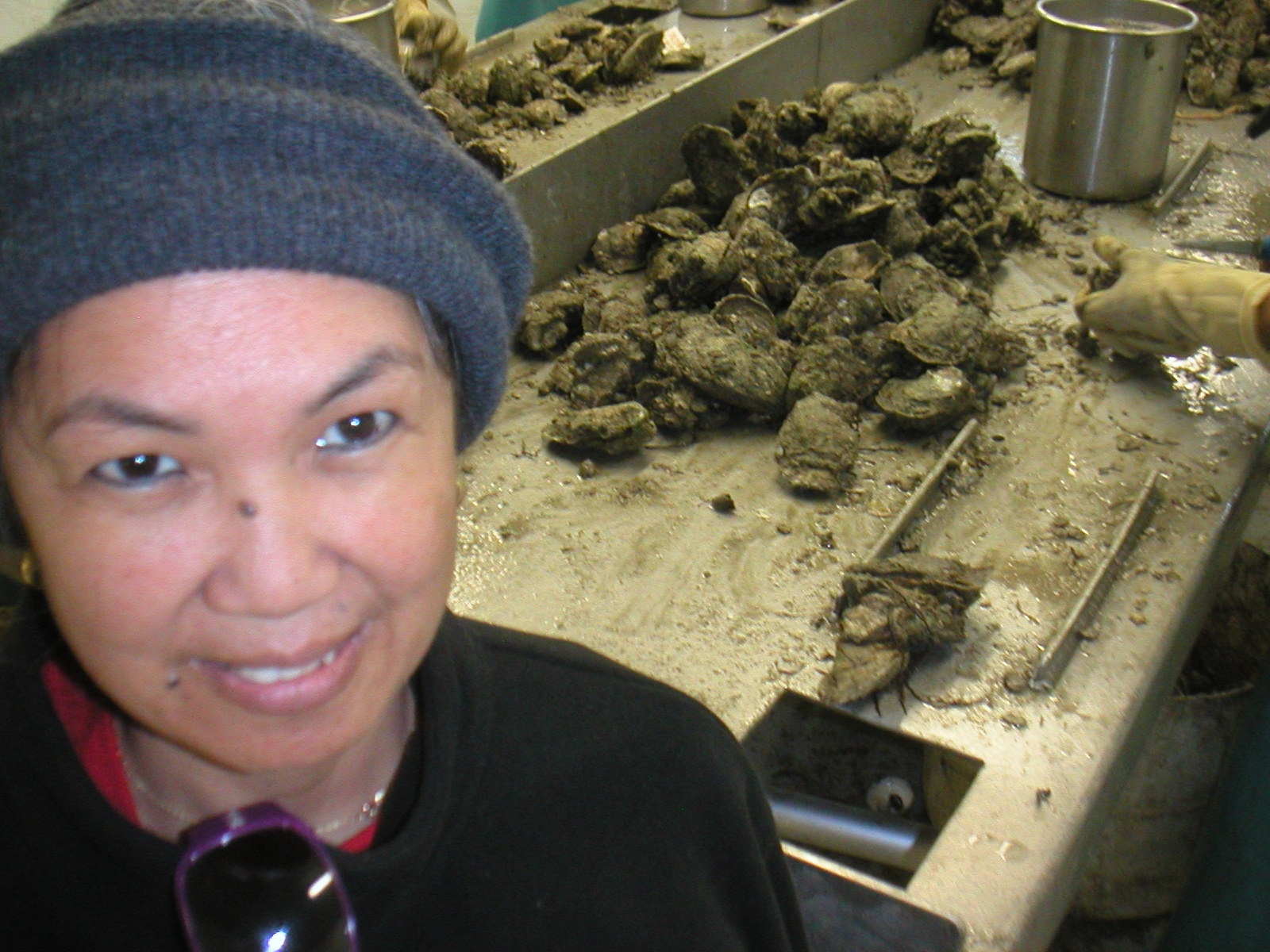 East Matagorda Bay Oysters Reefs near Sargent
